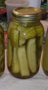 First batch of Pickles