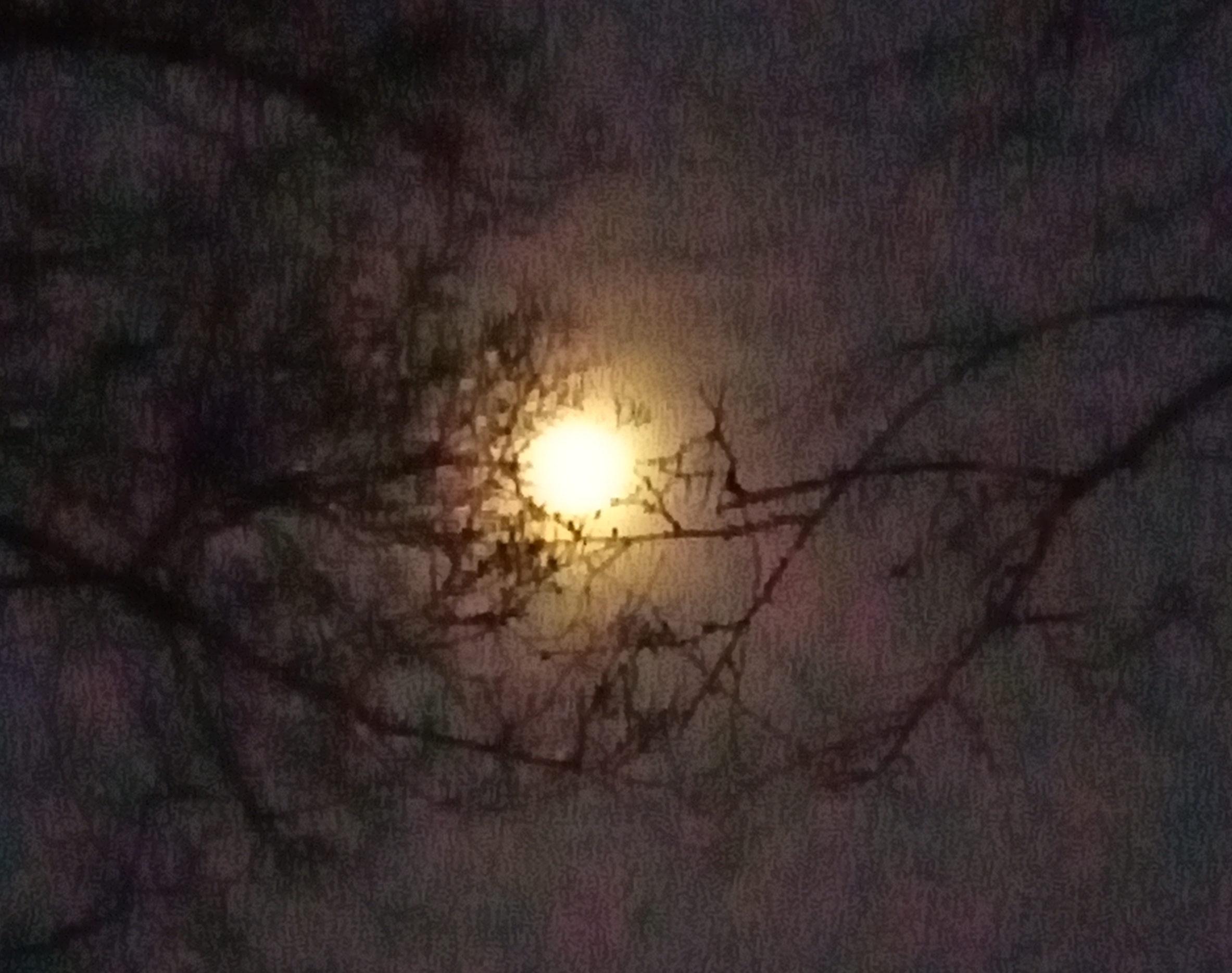Full Moon 4/6